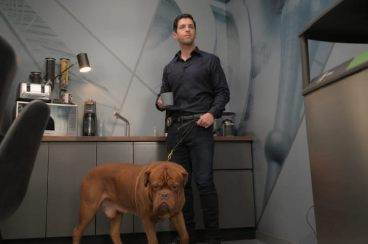 Turner and Hooch - First Look Promo, Promotional Photos + Press Release