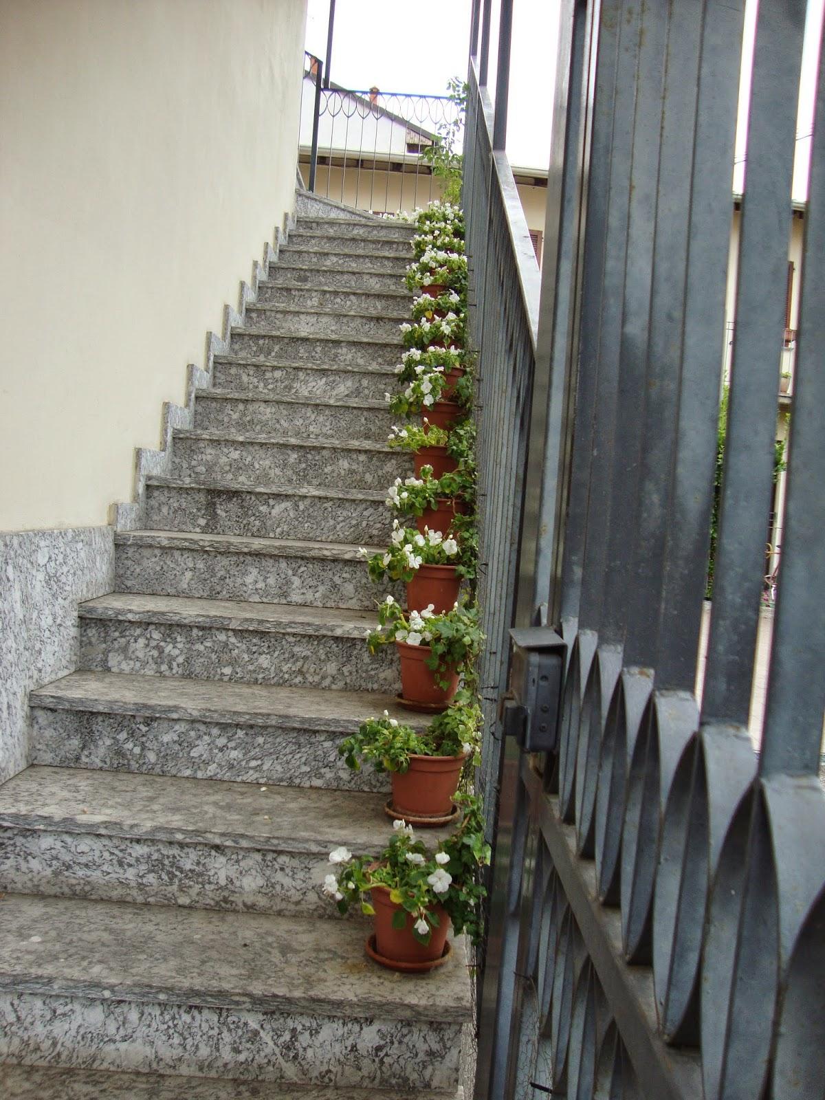 Un piccolo giardino in città: Una lunga scala di fiori