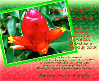 2013 Christmas and 2014 New Year greeting card