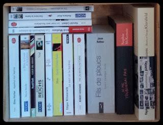 blog chronique littéraire Bibliza PAL