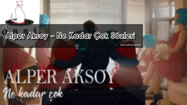 Alper Aksoy' un Ne Kadar Şarkısının Kapak Fotoğrafı