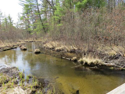Bigelow Creek