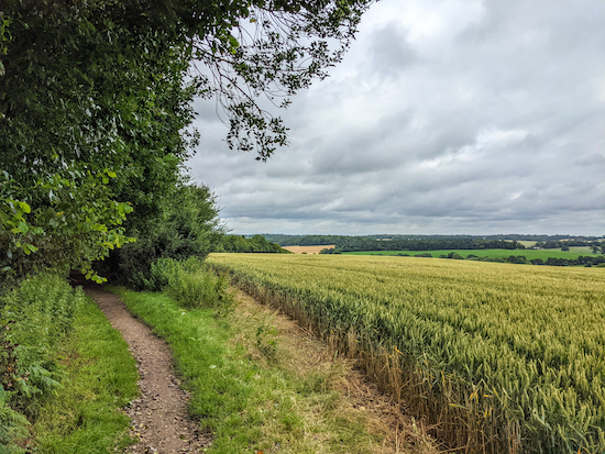 The bridleway between points 2 and 3