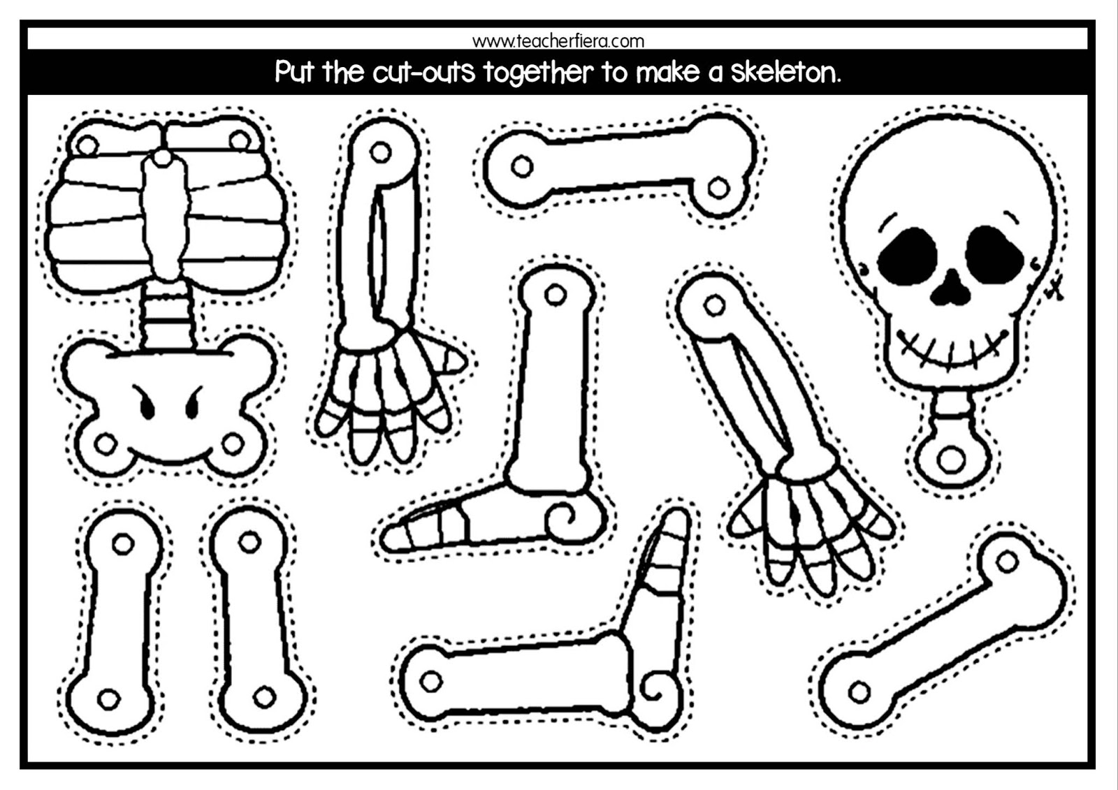 Teacherfiera Year 2 Unit 8 Assembling The Skeleton
