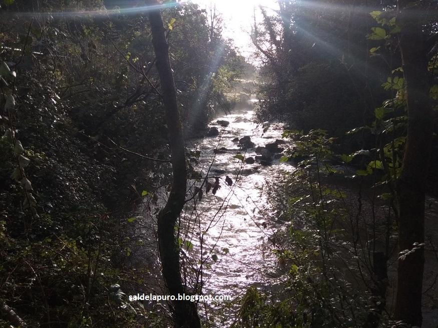 rio-otoño