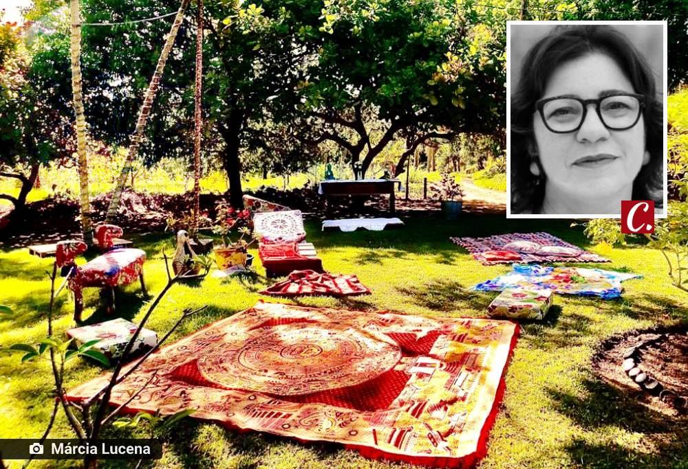 literatura paraibana cronica cotidiano auto ajuda recomeco terapia plantar cozinhar pintar