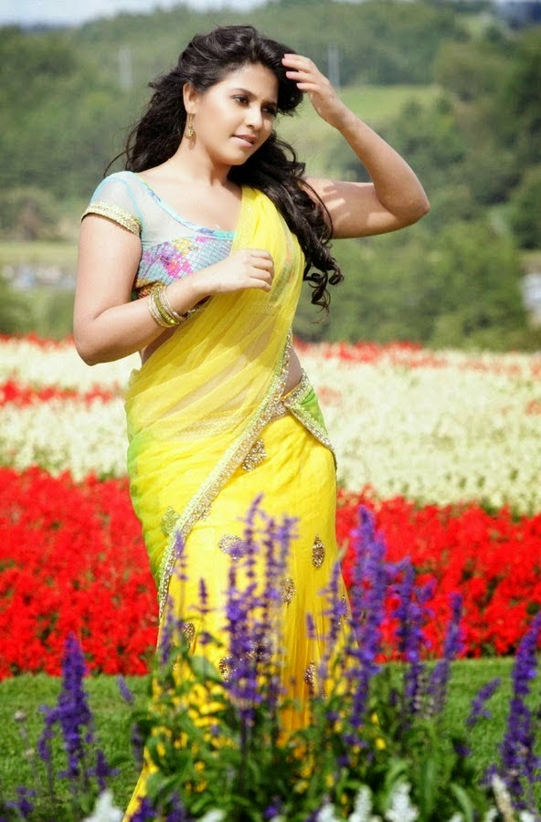 Glamorous South Indian Actress Photos Of Anjali In Yellow Half Saree