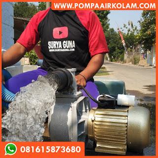 Pompa Air Untuk Kolam Ikan dan Usaha Pemancingan