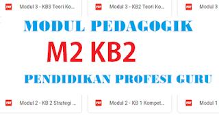 Strategi Peningkatan Profesionalisme Berkelanjutan M2 KB2
