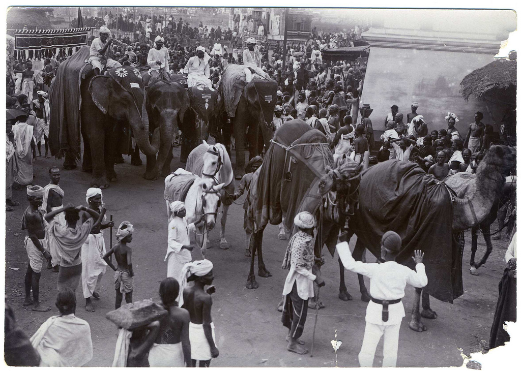 Procession in India with Camels and Elephants