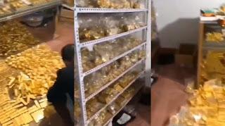Pejabat Korup di China Ditangkap, Barang Bukti 13 Ton Emas Batangan dan Uang Rp 522 Triliun Disita
