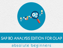 SAP BO Analysis Edition For OLAP ebook