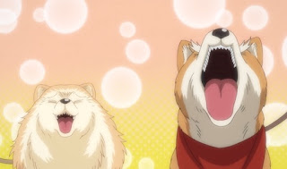 Oda Cinnamon Nobunaga Episodio 10