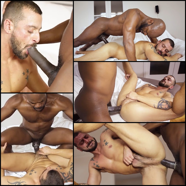 from Blaze interracial gay videos free