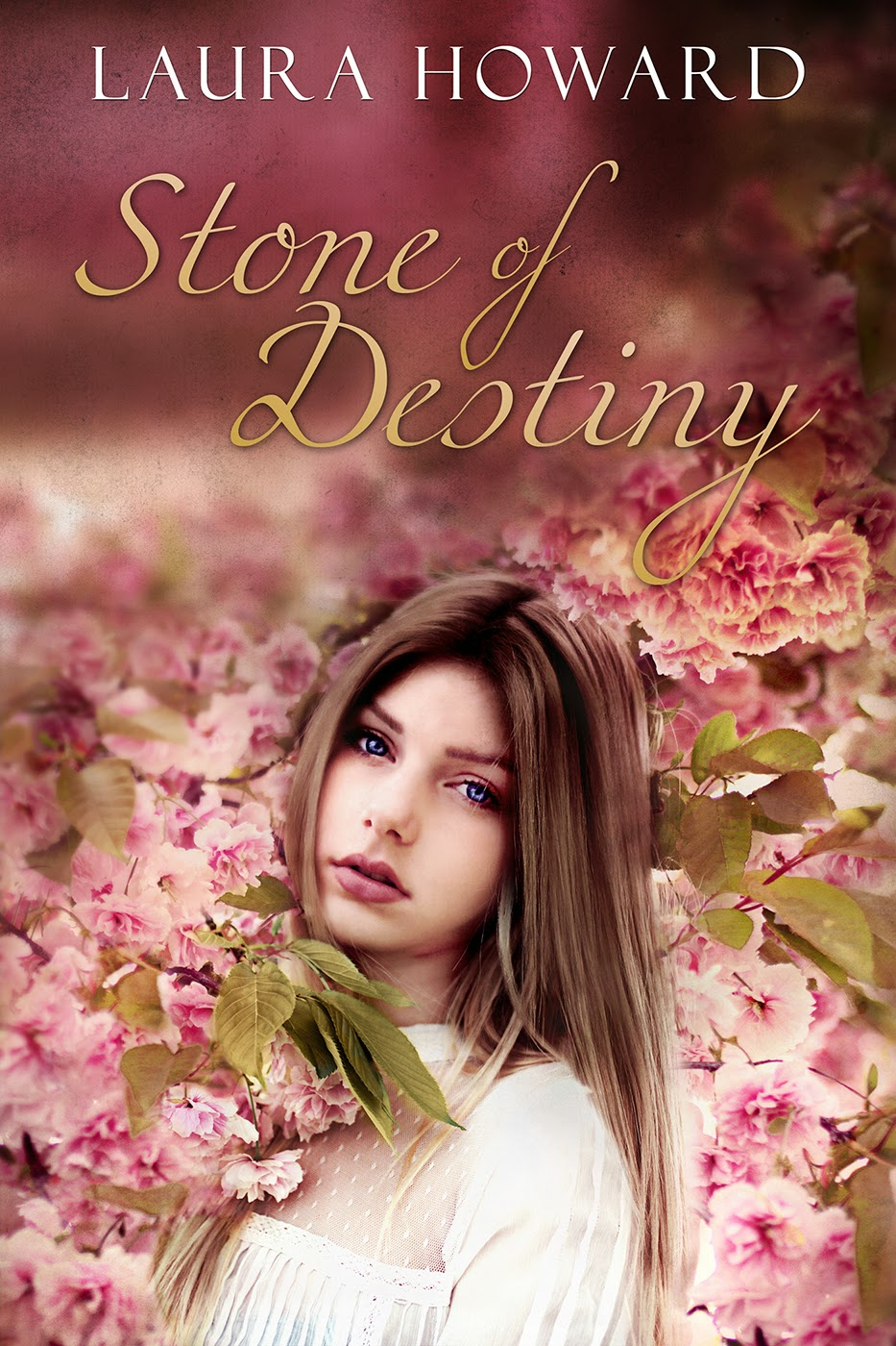 Release Blitz: Stone of Destiny by Laura Howard