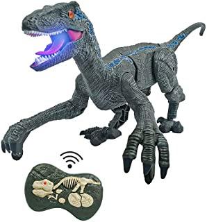 Dinosaur robot toys for kids, easylivingkey, best gift item