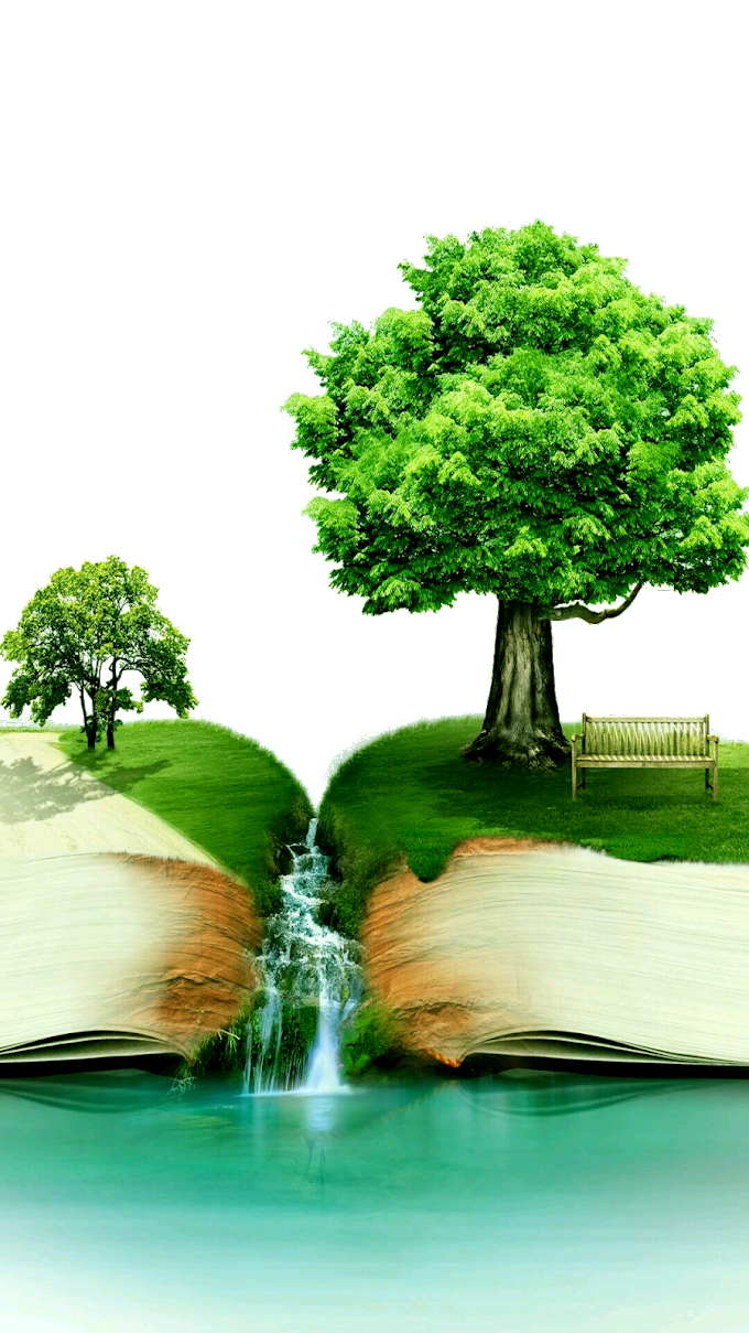 Ilustración de árbol verde, el diseño del día del libro del mundo de cosas cotidianas, lectura del día nacional del libro, libros creativos, niño, rama png by: pngkh.com