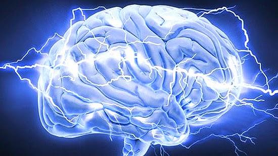 cérebro limpa toxinas