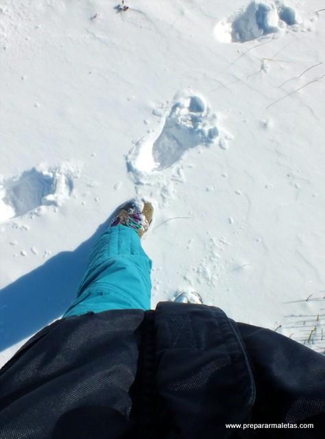 subir a la nieve en el Puerto de Navacerrada