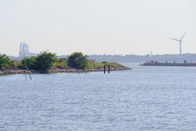 ゲートブリッジと風車~葛西臨海公園