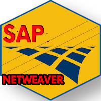Learn SAP NetWeaver