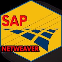 Learn SAP NetWeaver