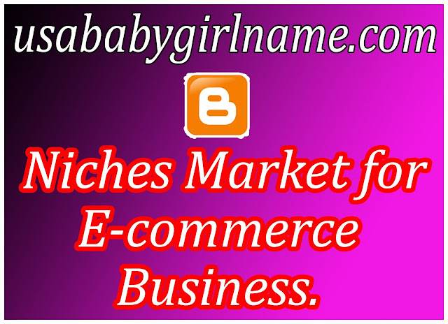 Niches Market for E-commerce Business