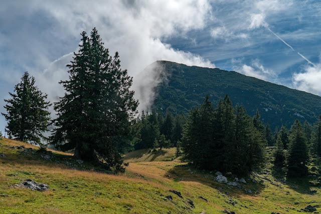 Gamsknogel und Kohleralm  Bergtour Inzell  Wanderung Chiemgauer Alpen 08