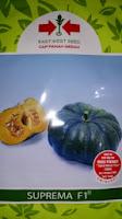 khasiat labu kuning, waluh, labu madu, manfaat labu kuning, jual benih waluh, toko pertanian, toko online, lmga agro