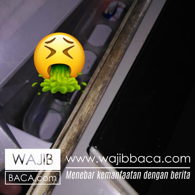 Cara Ampuh Bersihkan, Karet Pintu Kulkas Berjamur dan Susah Dibersihkan