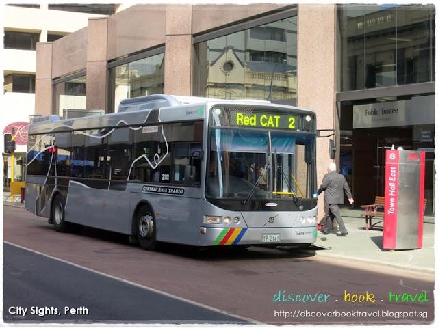 Red Cat Perth Free