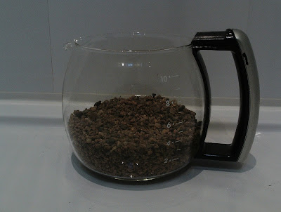 Coffee pot with base layer of grit Cactus in a coffee pot Green Fingered Blog