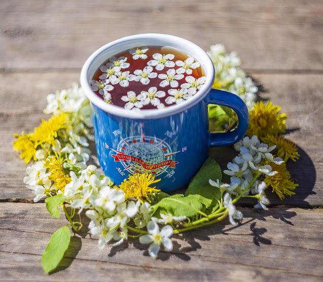 taza de té con flores rodeada de pétalos árbol de té