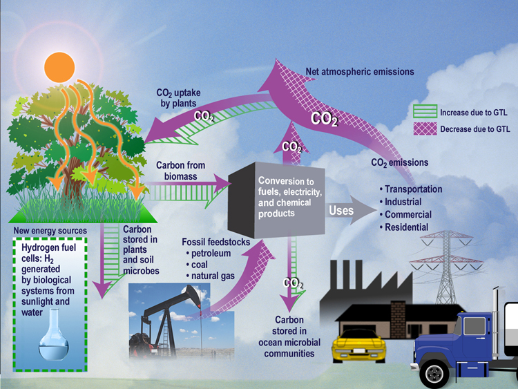A description of human activities which have been cited as one of the causes for environmental probl