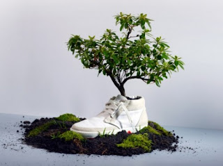 zapatillas biodegradables