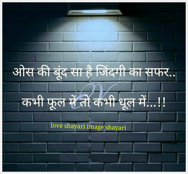 new love shayari,