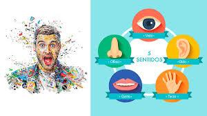 Marketing Sensorial Ejemplos