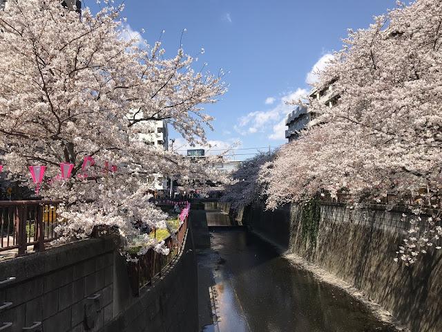 panduan hidup di Jepang