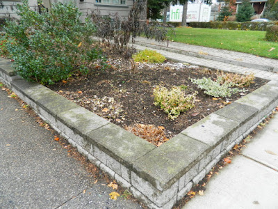 Fall Cleanup Toronto Bedford Park Front Garden after by Paul Jung Gardening Services