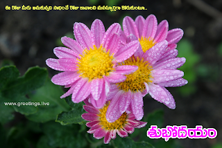 Fresh Telugu Morning time wishes with flowers.