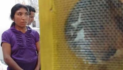 image 17 199 - Apicultores de Oaxaca, a contracorriente - El Apicultor Español: Actitud y Aptitud Apícola