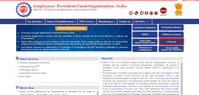 How to Check EPF balance Online?