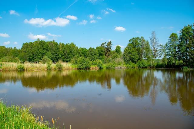 Vilsecker-Muldenweg Amberg-Sulzbacher-Land-10