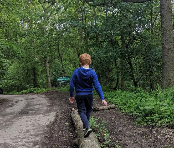 Falling Foss Tea Garden (near Whitby) - walk from car park
