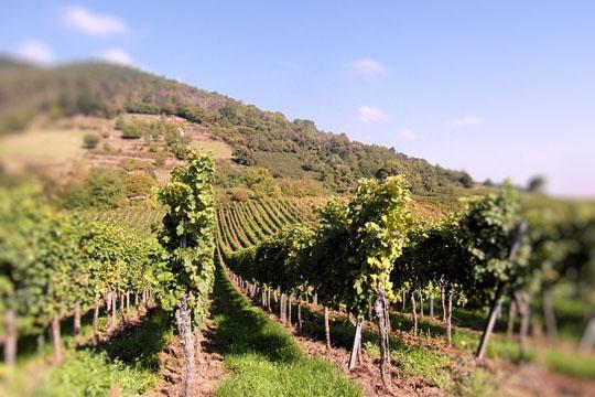 www.viajesyturismo.com.co540x360