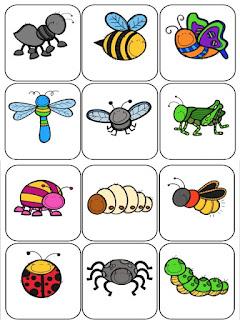 memorama-insectos