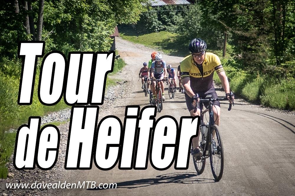 Tour de Heifer, Brattleboro, Vermont