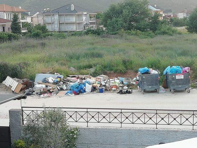 Ιωάννινα:Καρδαμίτσια ...2020...Ενας σκουπιδότοπος στα σπίτια τους ..