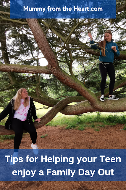 Tips for helping your teenager enjoy a family day out at Beningborough Hall, York