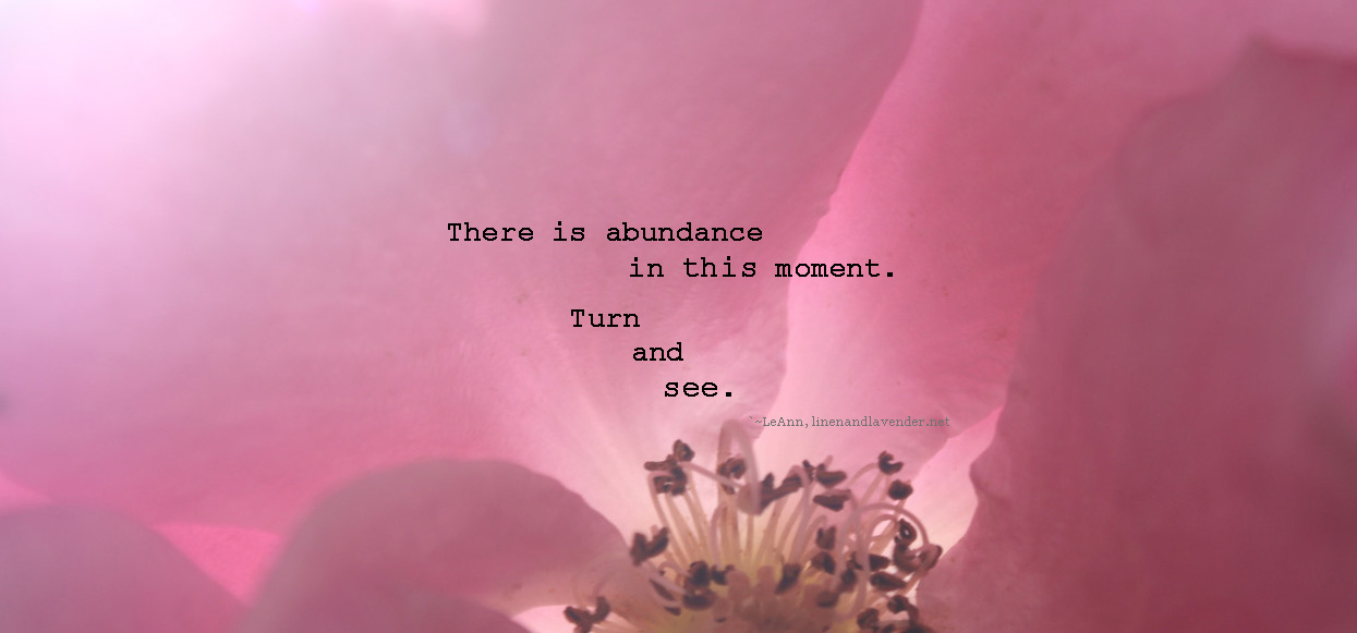 """There is abundance in this moment.  Turn and see.  -quote by LeAnn, linenandlavender.net - as seen in the post:  Nothing but blue skies:  http://www.linenandlavender.net/2014/09/nothing-but-blue-skies.html"